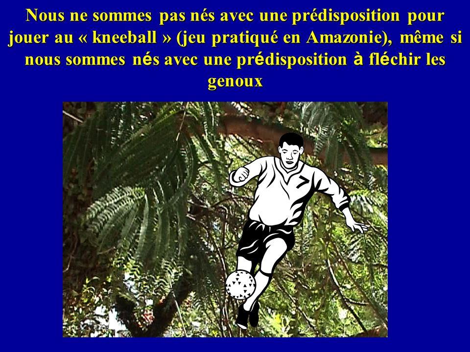 Nous ne sommes pas nés avec une prédisposition pour jouer au « kneeball » (jeu pratiqué en Amazonie), même si nous sommes n é s avec une pr é disposit