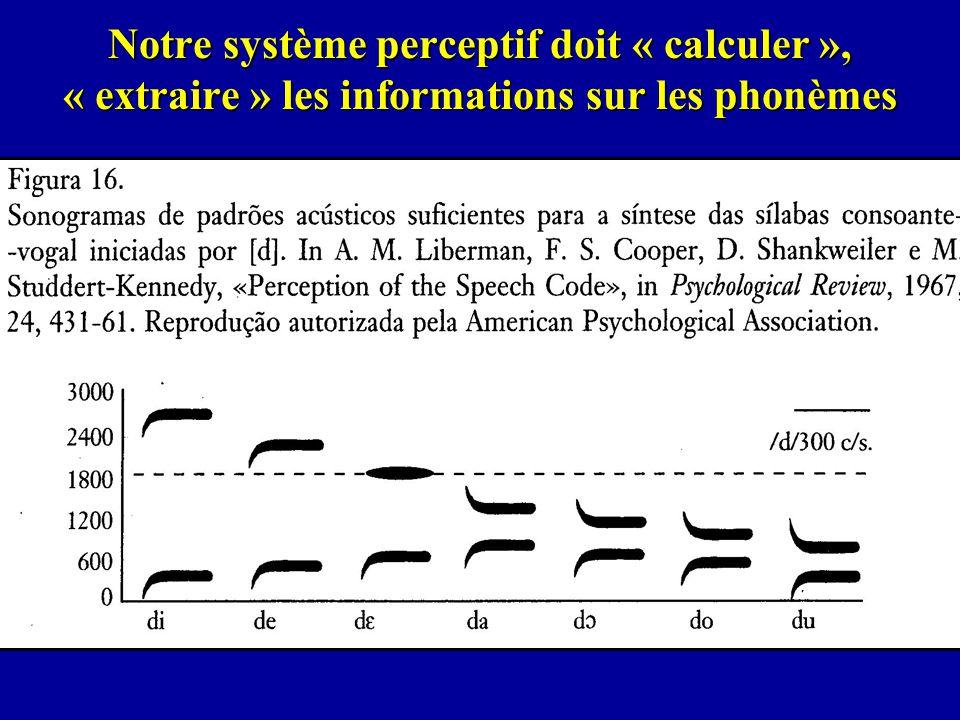 Notre système perceptif doit « calculer », « extraire » les informations sur les phonèmes