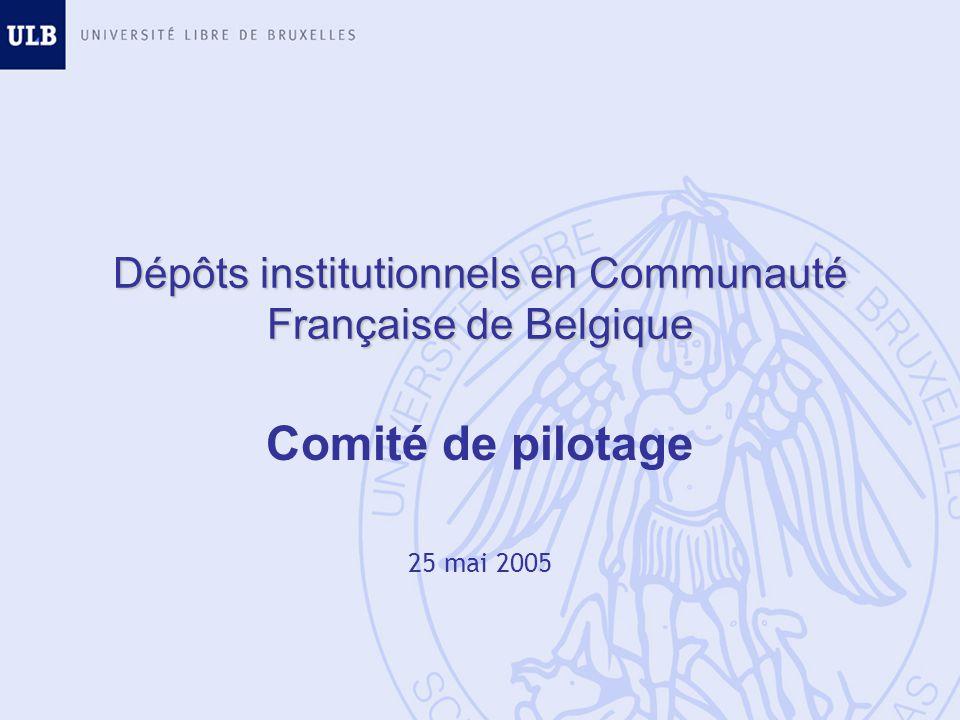 Dépôts institutionnels en Communauté Française de Belgique Comité de pilotage 25 mai 2005