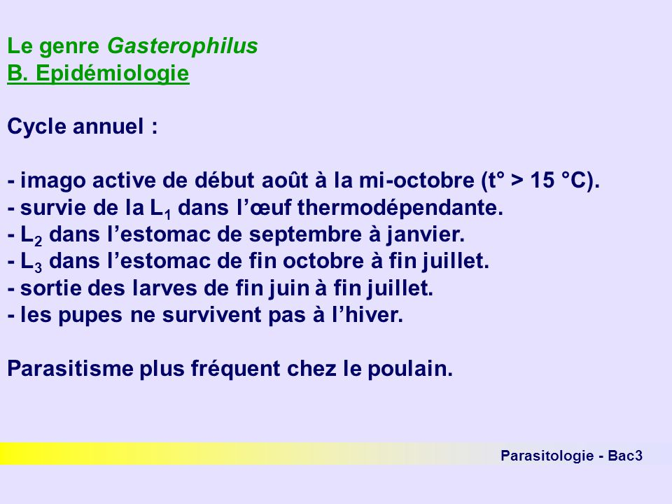 Parasitologie - Bac3 Le genre Gasterophilus B. Epidémiologie Cycle annuel : - imago active de début août à la mi-octobre (t° > 15 °C). - survie de la