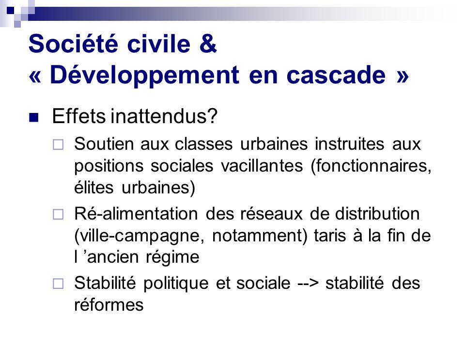 Société civile & « Développement en cascade » Effets inattendus.