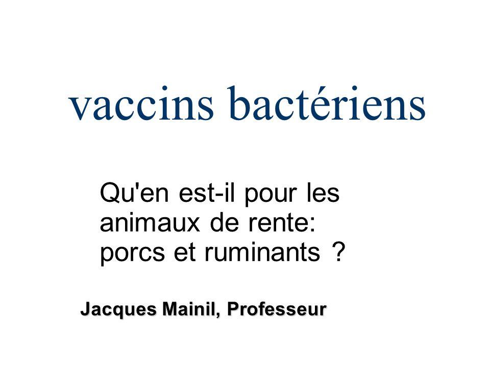 vaccins bactériens Qu'en est-il pour les animaux de rente: porcs et ruminants ? Jacques Mainil, Professeur