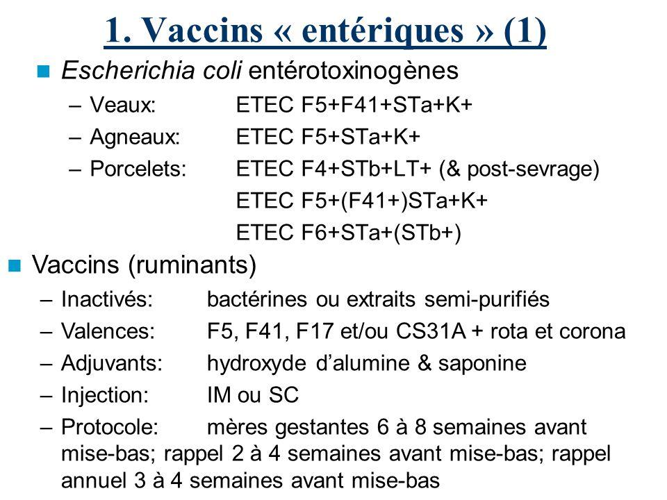1. Vaccins « entériques » (1) Escherichia coli entérotoxinogènes –Veaux: ETEC F5+F41+STa+K+ –Agneaux:ETEC F5+STa+K+ –Porcelets: ETEC F4+STb+LT+ (& pos