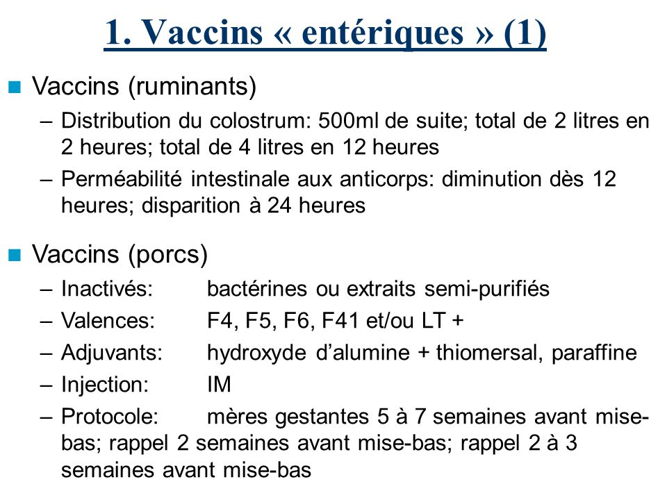 1. Vaccins « entériques » (1) Vaccins (ruminants) –Distribution du colostrum: 500ml de suite; total de 2 litres en 2 heures; total de 4 litres en 12 h