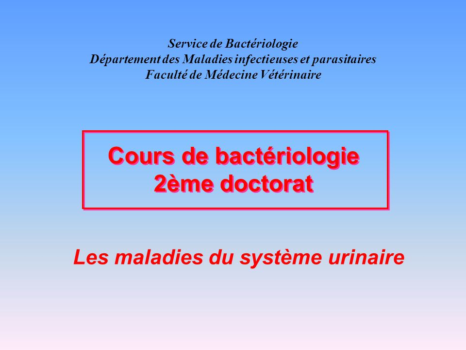 Service de Bactériologie Département des Maladies infectieuses et parasitaires Faculté de Médecine Vétérinaire Les maladies du système urinaire Cours de bactériologie 2ème doctorat Cours de bactériologie 2ème doctorat