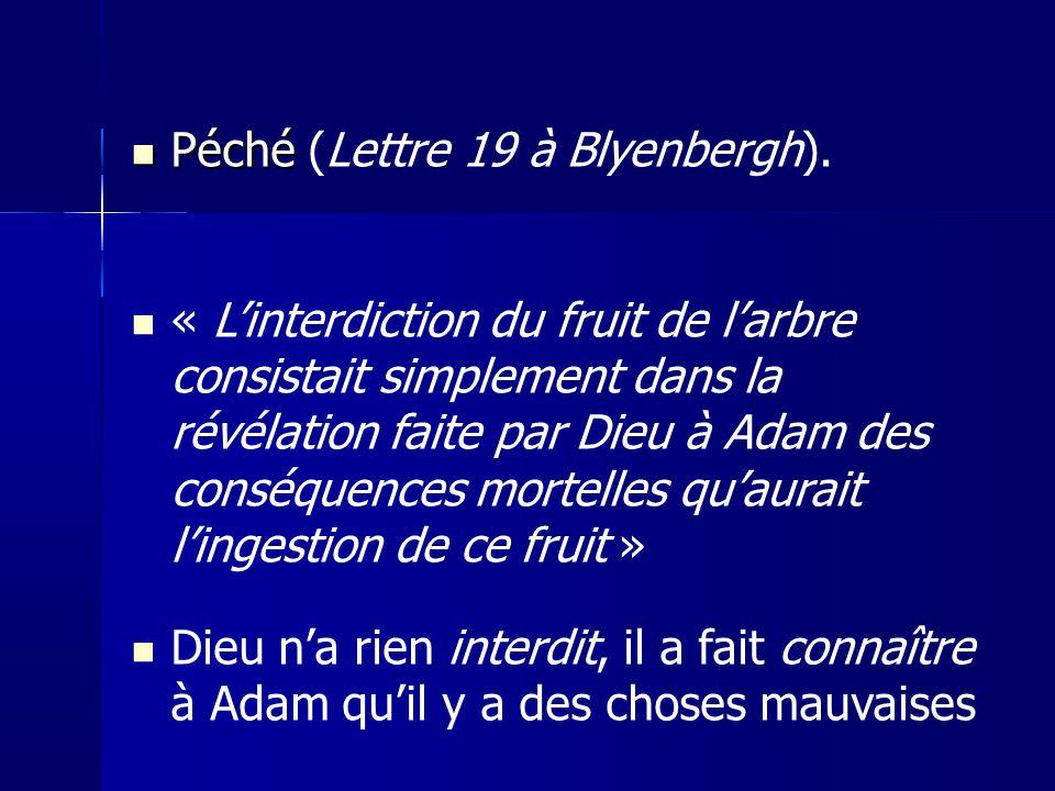 Péché Péché (Lettre 19 à Blyenbergh).