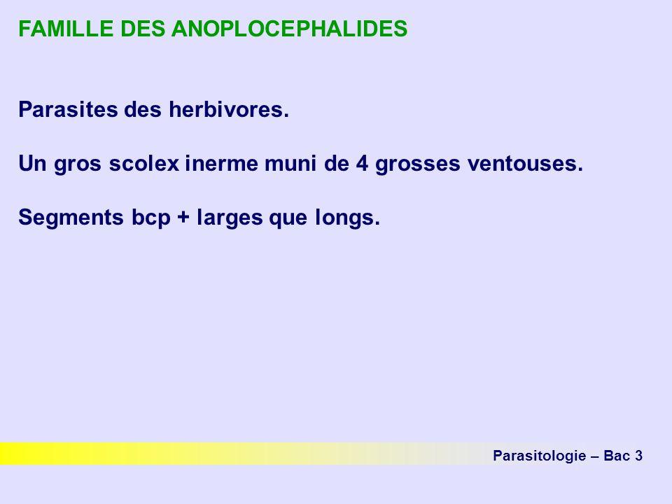 FAMILLE DES ANOPLOCEPHALIDES Parasites des herbivores. Un gros scolex inerme muni de 4 grosses ventouses. Segments bcp + larges que longs. Parasitolog