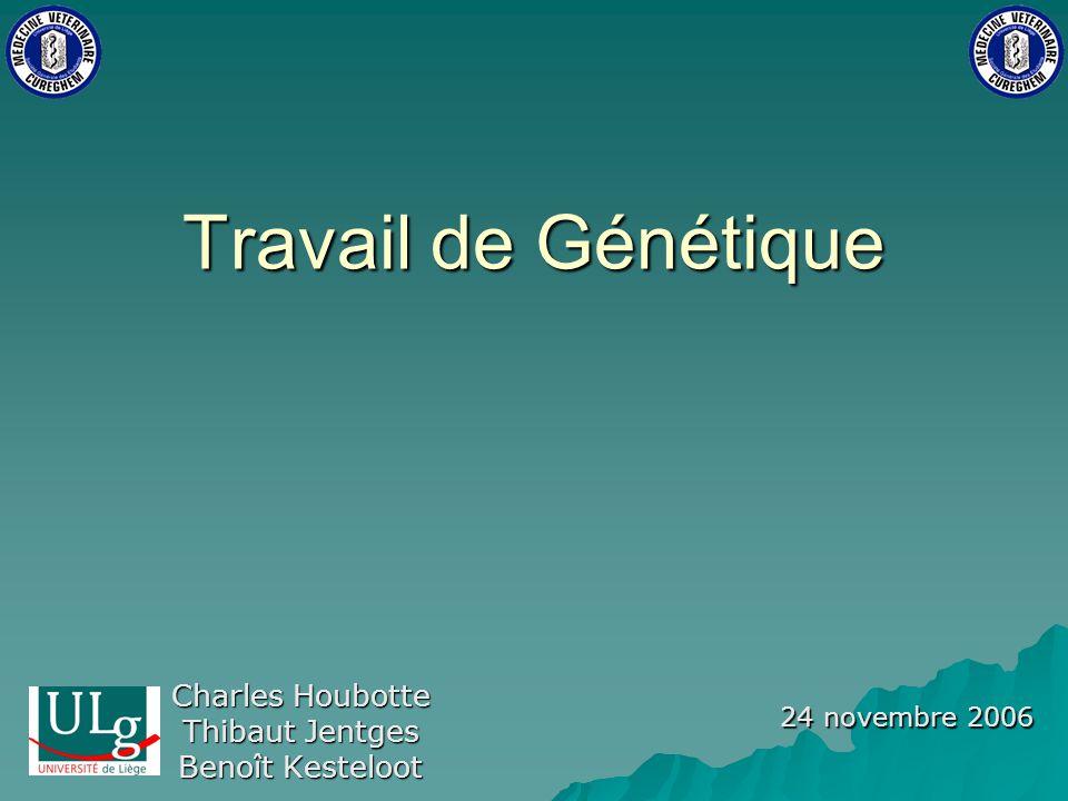 Travail de Génétique Charles Houbotte Thibaut Jentges Benoît Kesteloot 24 novembre 2006