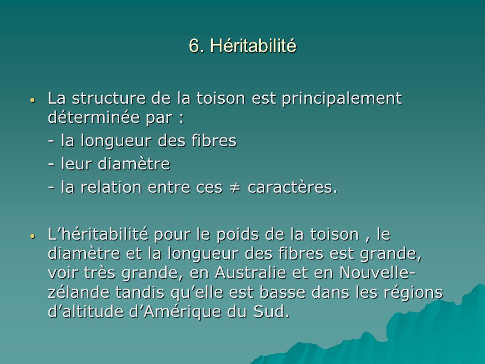 6. Héritabilité La structure de la toison est principalement déterminée par : La structure de la toison est principalement déterminée par : - la longu