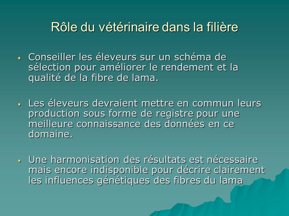 Rôle du vétérinaire dans la filière Conseiller les éleveurs sur un schéma de sélection pour améliorer le rendement et la qualité de la fibre de lama.
