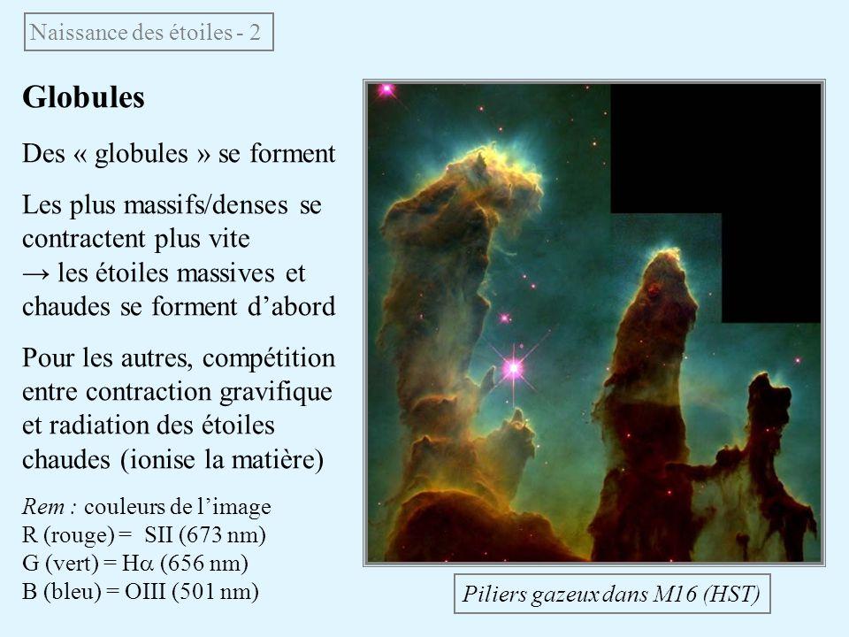 Globules Des « globules » se forment Les plus massifs/denses se contractent plus vite les étoiles massives et chaudes se forment dabord Pour les autre