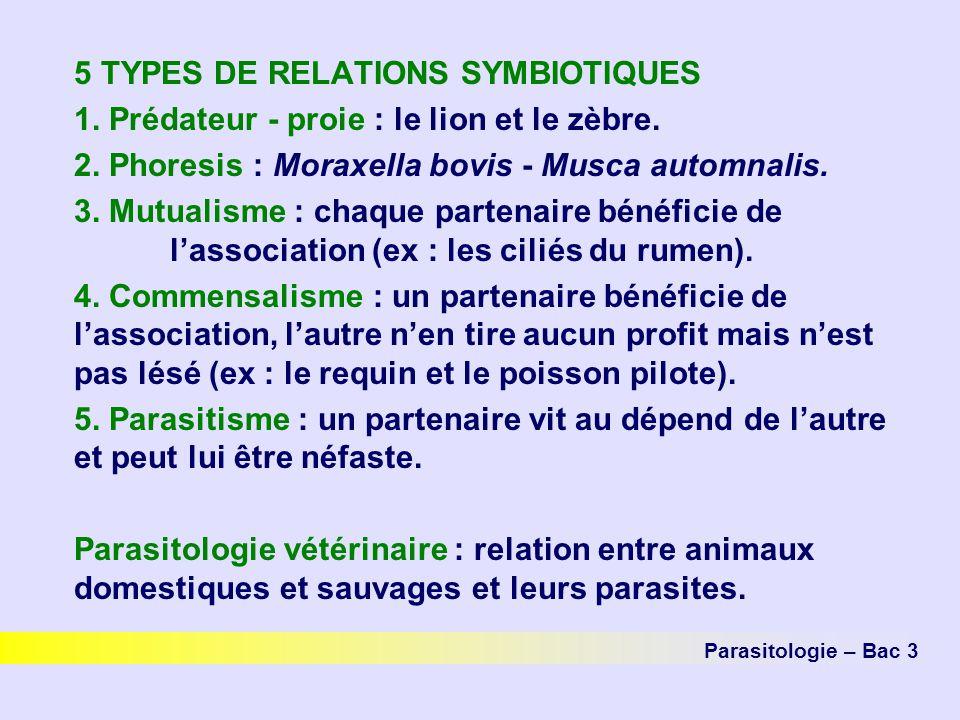 5 TYPES DE RELATIONS SYMBIOTIQUES 1. Prédateur - proie : le lion et le zèbre. 2. Phoresis : Moraxella bovis - Musca automnalis. 3. Mutualisme : chaque