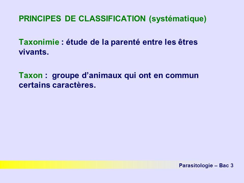 PRINCIPES DE CLASSIFICATION (systématique) Taxonimie : étude de la parenté entre les êtres vivants. Taxon : groupe danimaux qui ont en commun certains