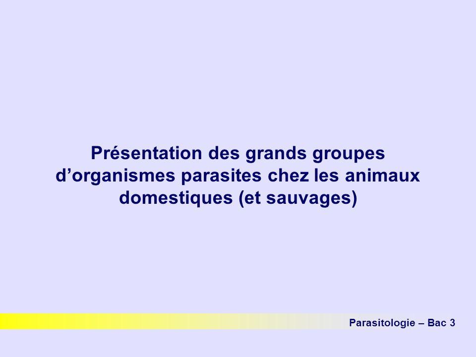 Présentation des grands groupes dorganismes parasites chez les animaux domestiques (et sauvages) Parasitologie – Bac 3