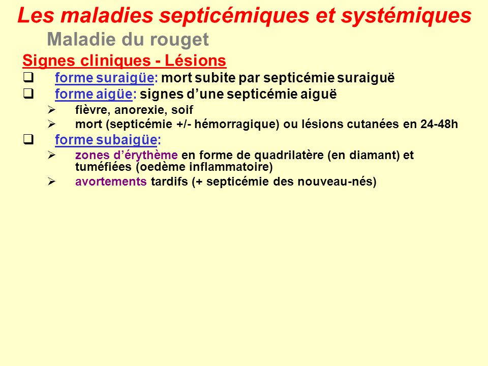 Maladie du rouget Signes cliniques - Lésions forme suraigüe: mort subite par septicémie suraiguë forme aigüe: signes dune septicémie aiguë fièvre, ano
