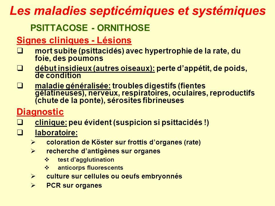 PSITTACOSE - ORNITHOSE Signes cliniques - Lésions mort subite (psittacidés) avec hypertrophie de la rate, du foie, des poumons début insidieux (autres