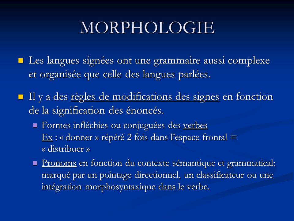 MORPHOLOGIE Les langues signées ont une grammaire aussi complexe et organisée que celle des langues parlées. Les langues signées ont une grammaire aus