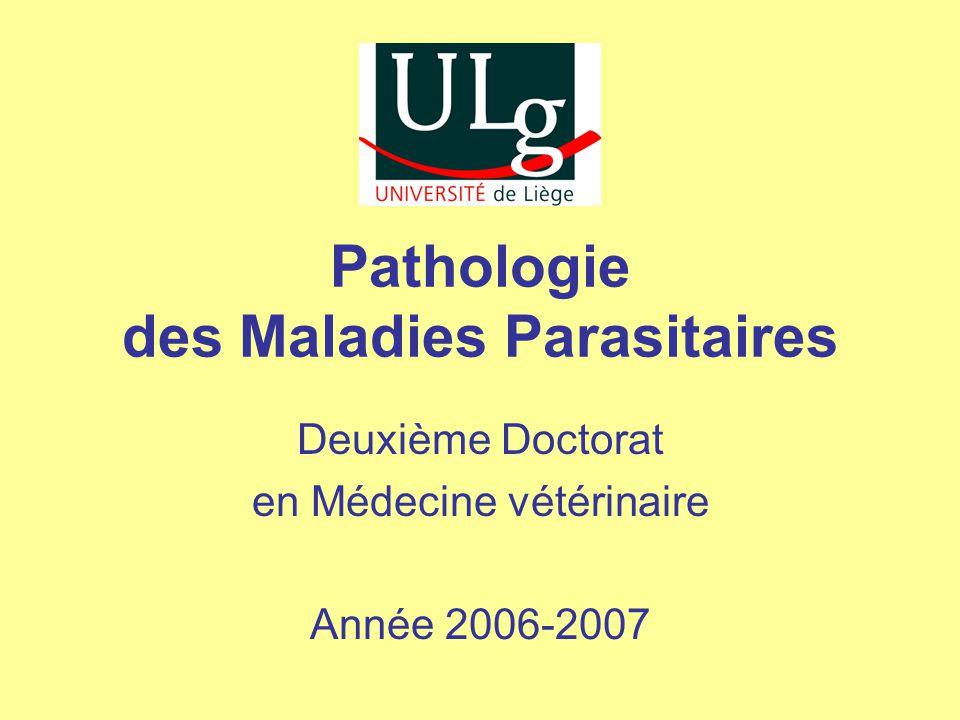 Pathologie des Maladies Parasitaires Deuxième Doctorat en Médecine vétérinaire Année 2006-2007