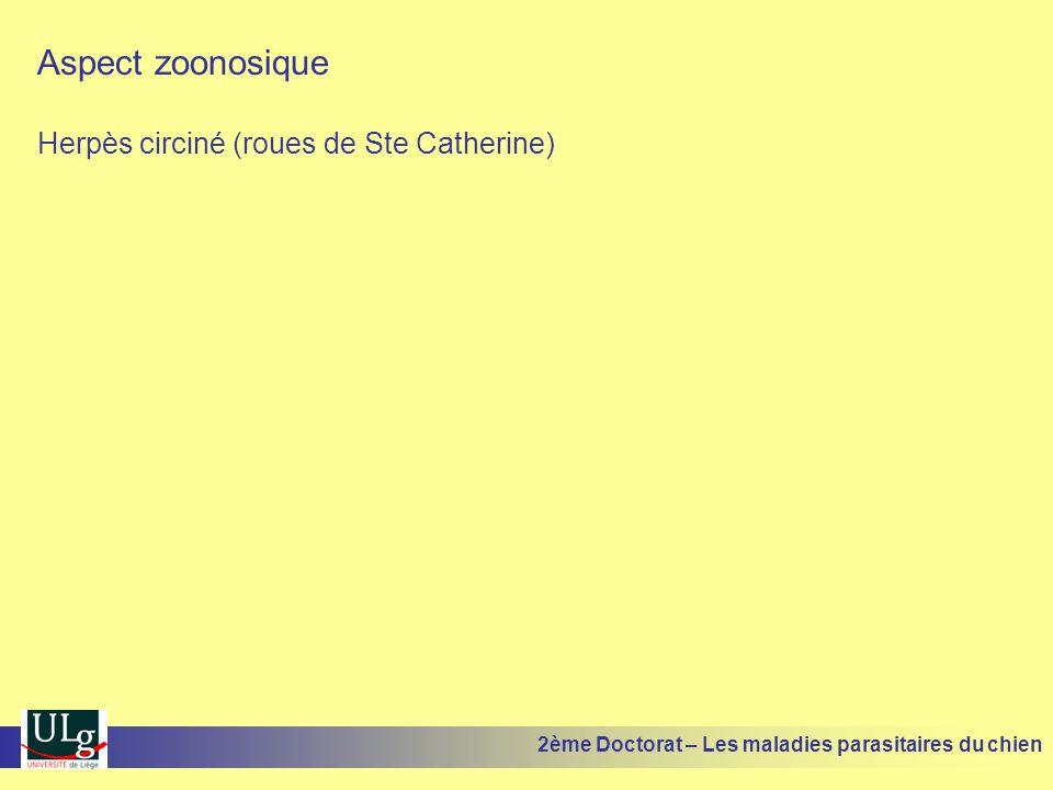 Aspect zoonosique Herpès circiné (roues de Ste Catherine) 2ème Doctorat – Les maladies parasitaires du chien