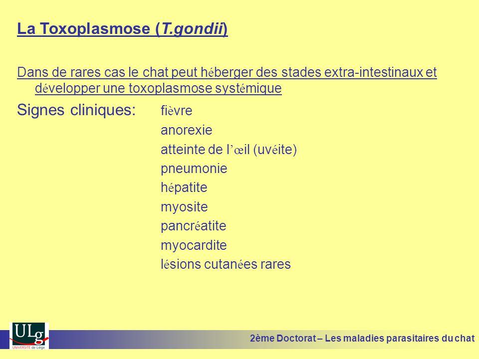 La Toxoplasmose (T.gondii) Dans de rares cas le chat peut h é berger des stades extra-intestinaux et d é velopper une toxoplasmose syst é mique Signes