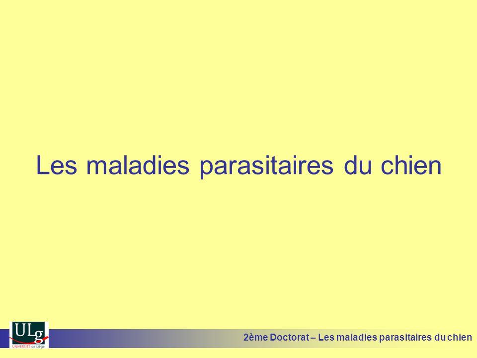 Epidémiologie Plusieurs espèces décrites chez le chien Maladies fréquentes dans les collectivités Maladies plus fréquentes chez les jeunes Induction dun état dimmunité 2ème Doctorat – Les maladies parasitaires du chien