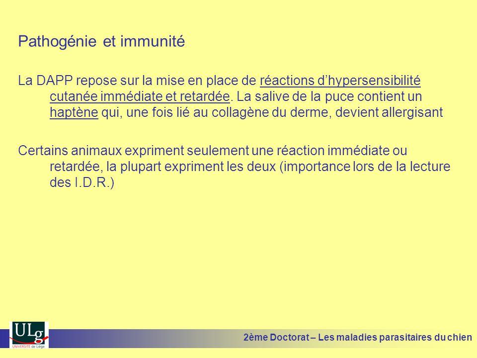 Pathogénie et immunité La DAPP repose sur la mise en place de réactions dhypersensibilité cutanée immédiate et retardée. La salive de la puce contient