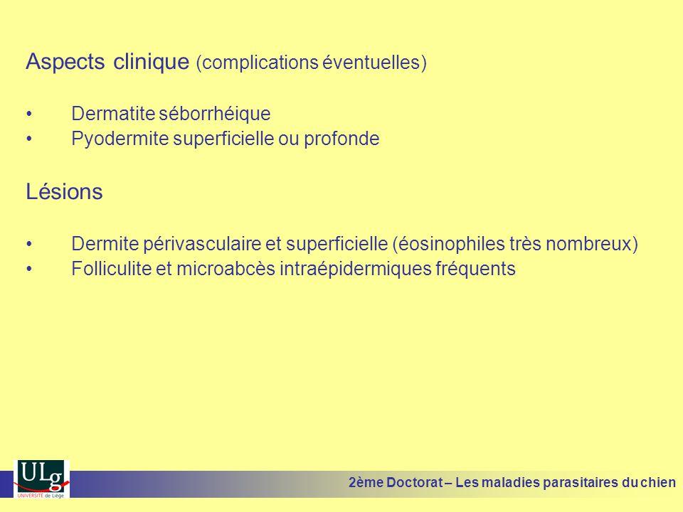 Aspects clinique (complications éventuelles) Dermatite séborrhéique Pyodermite superficielle ou profonde Lésions Dermite périvasculaire et superficielle (éosinophiles très nombreux) Folliculite et microabcès intraépidermiques fréquents 2ème Doctorat – Les maladies parasitaires du chien