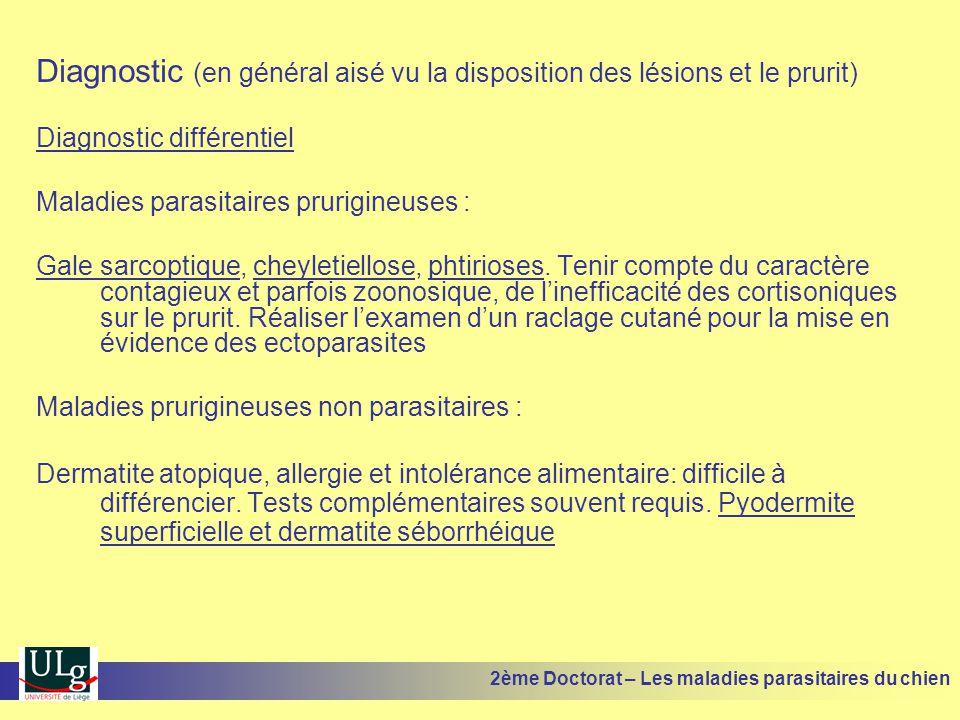 Diagnostic (en général aisé vu la disposition des lésions et le prurit) Diagnostic différentiel Maladies parasitaires prurigineuses : Gale sarcoptique, cheyletiellose, phtirioses.