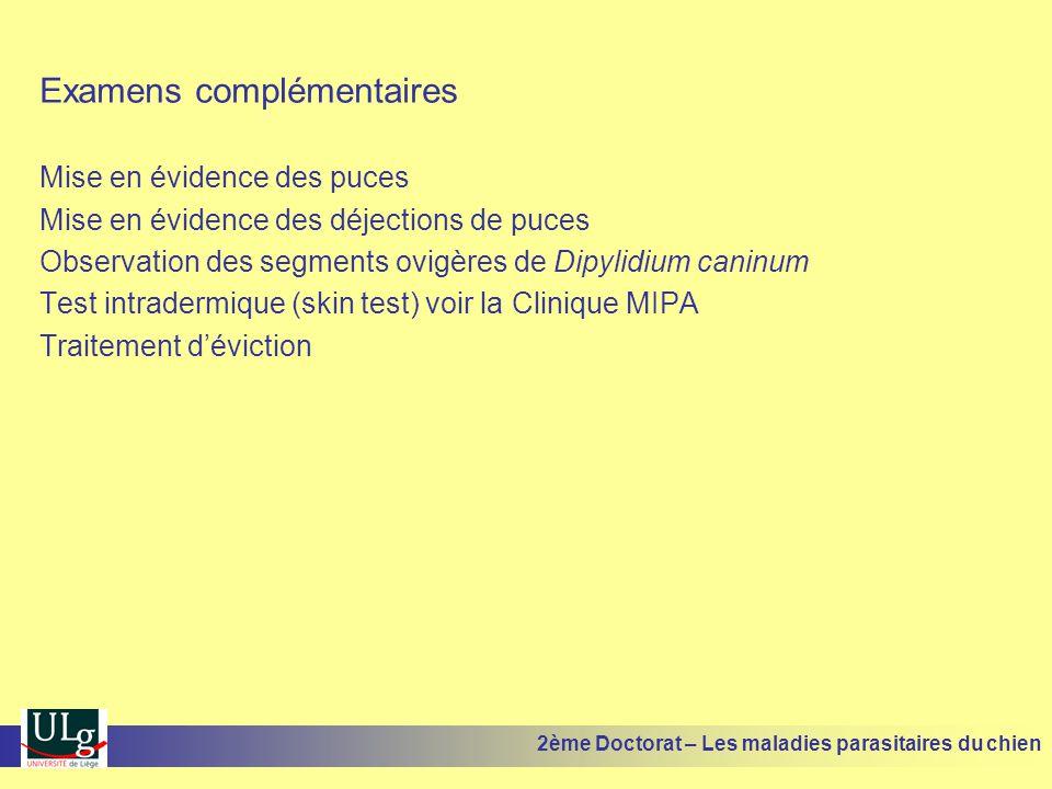 Examens complémentaires Mise en évidence des puces Mise en évidence des déjections de puces Observation des segments ovigères de Dipylidium caninum Te