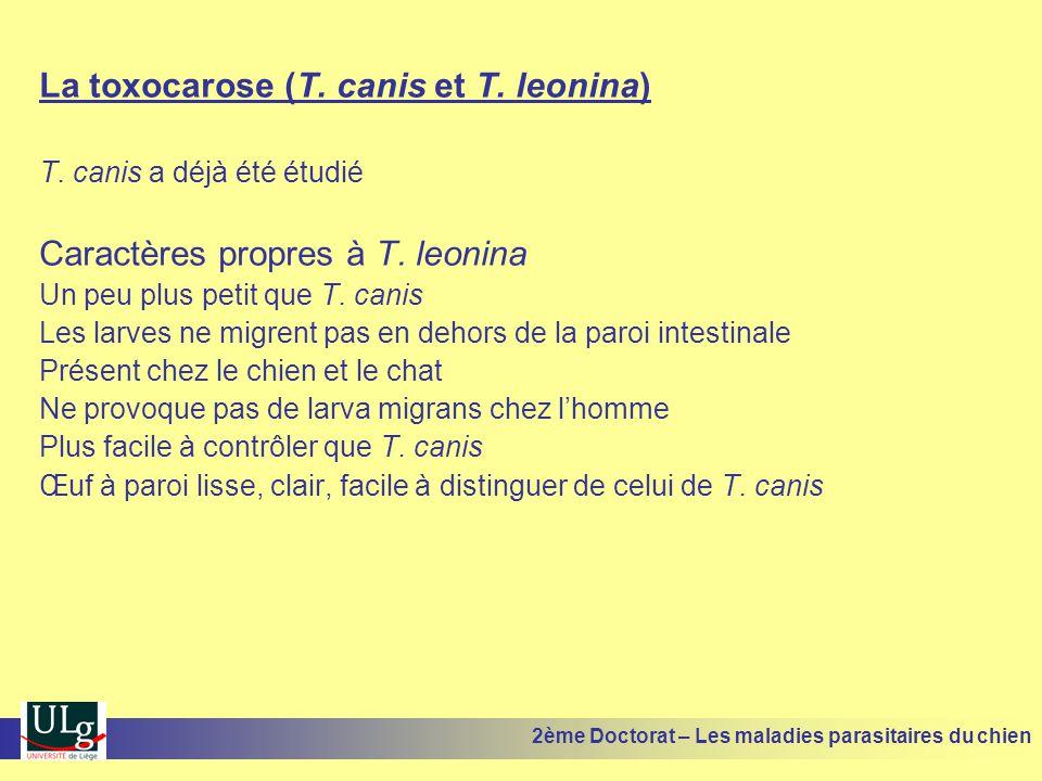 La toxocarose (T. canis et T. leonina) Traitement et prophylaxie : voir T. canis
