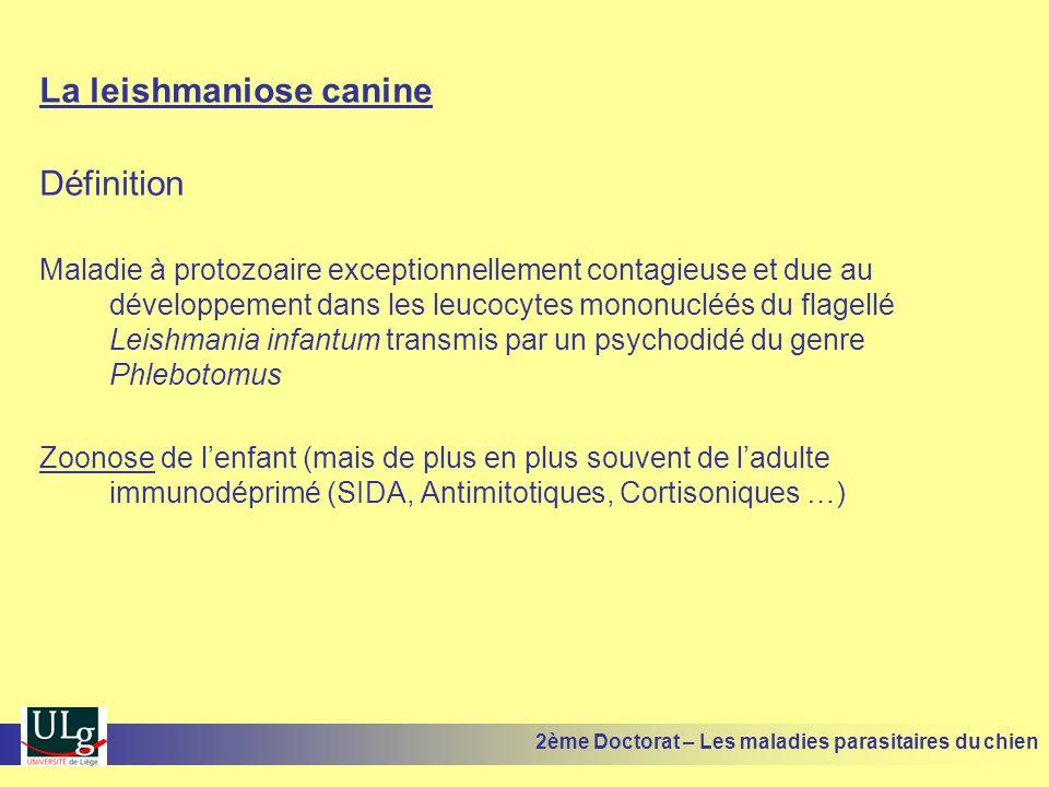 La leishmaniose canine Définition Maladie à protozoaire exceptionnellement contagieuse et due au développement dans les leucocytes mononucléés du flagellé Leishmania infantum transmis par un psychodidé du genre Phlebotomus Zoonose de lenfant (mais de plus en plus souvent de ladulte immunodéprimé (SIDA, Antimitotiques, Cortisoniques …) 2ème Doctorat – Les maladies parasitaires du chien