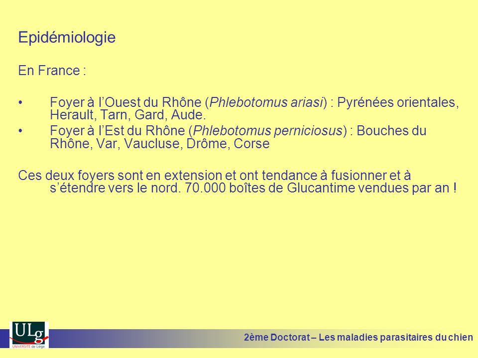 Epidémiologie En France : Foyer à lOuest du Rhône (Phlebotomus ariasi) : Pyrénées orientales, Herault, Tarn, Gard, Aude. Foyer à lEst du Rhône (Phlebo