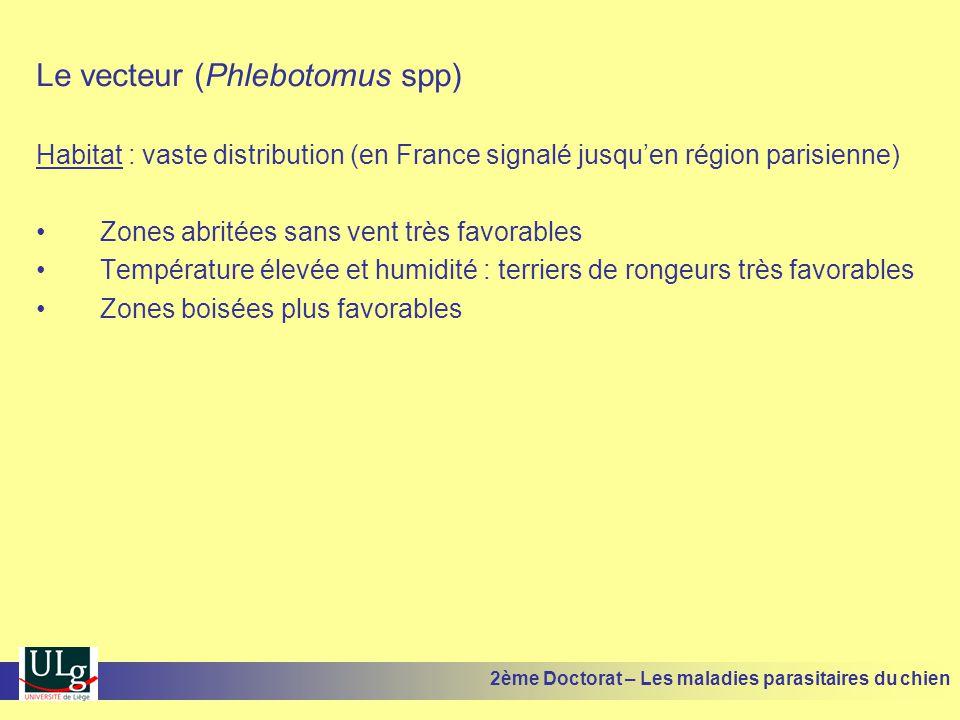 Le vecteur (Phlebotomus spp) Habitat : vaste distribution (en France signalé jusquen région parisienne) Zones abritées sans vent très favorables Tempé