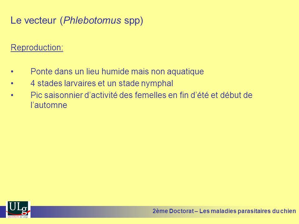 Le vecteur (Phlebotomus spp) Reproduction: Ponte dans un lieu humide mais non aquatique 4 stades larvaires et un stade nymphal Pic saisonnier dactivit