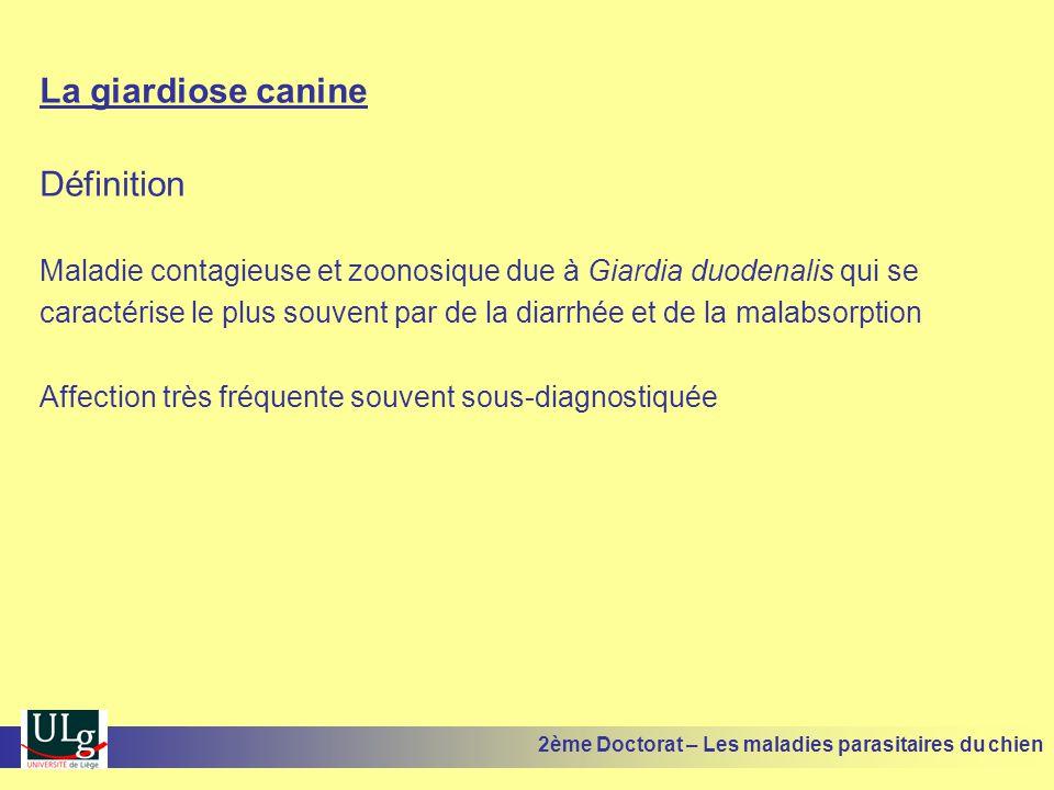 La giardiose canine Définition Maladie contagieuse et zoonosique due à Giardia duodenalis qui se caractérise le plus souvent par de la diarrhée et de la malabsorption Affection très fréquente souvent sous-diagnostiquée 2ème Doctorat – Les maladies parasitaires du chien