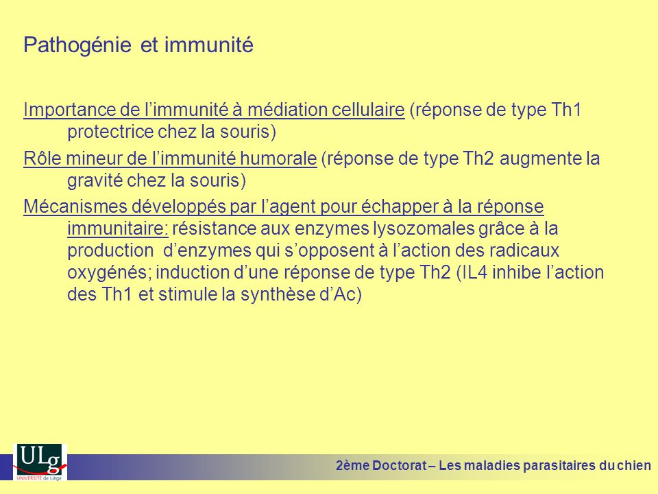 Pathogénie et immunité Importance de limmunité à médiation cellulaire (réponse de type Th1 protectrice chez la souris) Rôle mineur de limmunité humorale (réponse de type Th2 augmente la gravité chez la souris) Mécanismes développés par lagent pour échapper à la réponse immunitaire: résistance aux enzymes lysozomales grâce à la production denzymes qui sopposent à laction des radicaux oxygénés; induction dune réponse de type Th2 (IL4 inhibe laction des Th1 et stimule la synthèse dAc) 2ème Doctorat – Les maladies parasitaires du chien