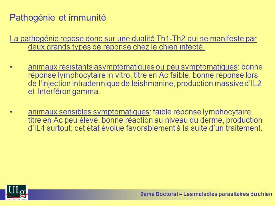 Pathogénie et immunité La pathogénie repose donc sur une dualité Th1-Th2 qui se manifeste par deux grands types de réponse chez le chien infecté. anim