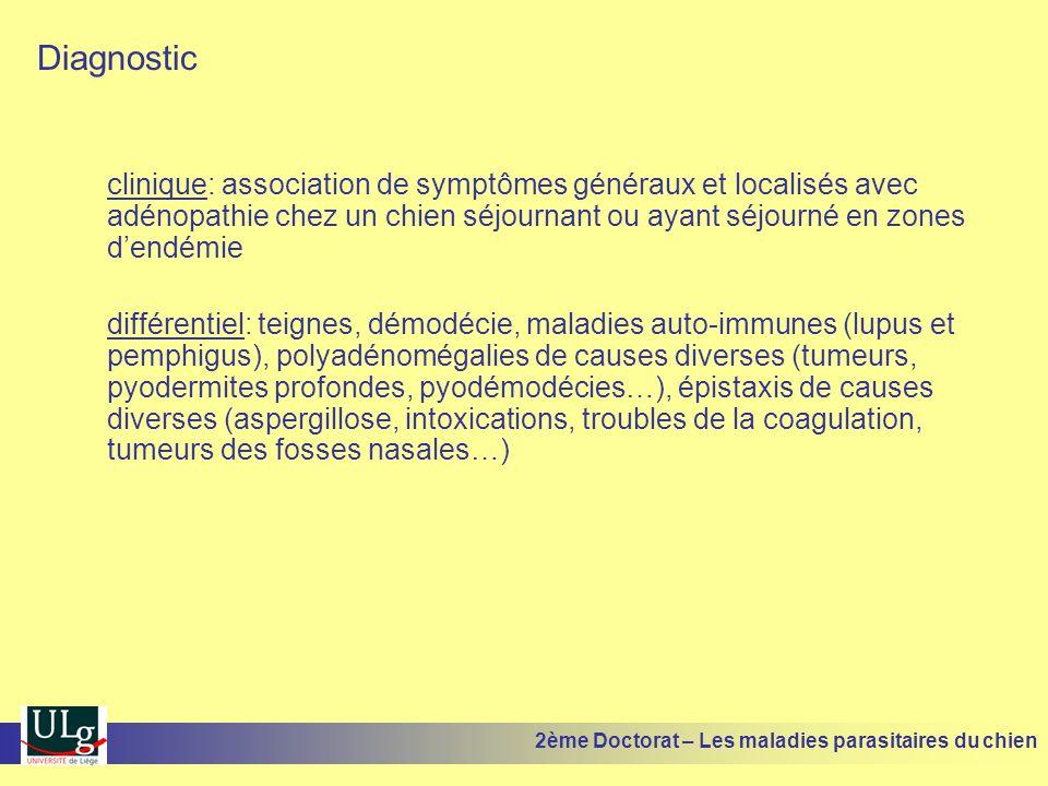 Diagnostic clinique: association de symptômes généraux et localisés avec adénopathie chez un chien séjournant ou ayant séjourné en zones dendémie différentiel: teignes, démodécie, maladies auto-immunes (lupus et pemphigus), polyadénomégalies de causes diverses (tumeurs, pyodermites profondes, pyodémodécies…), épistaxis de causes diverses (aspergillose, intoxications, troubles de la coagulation, tumeurs des fosses nasales…) 2ème Doctorat – Les maladies parasitaires du chien