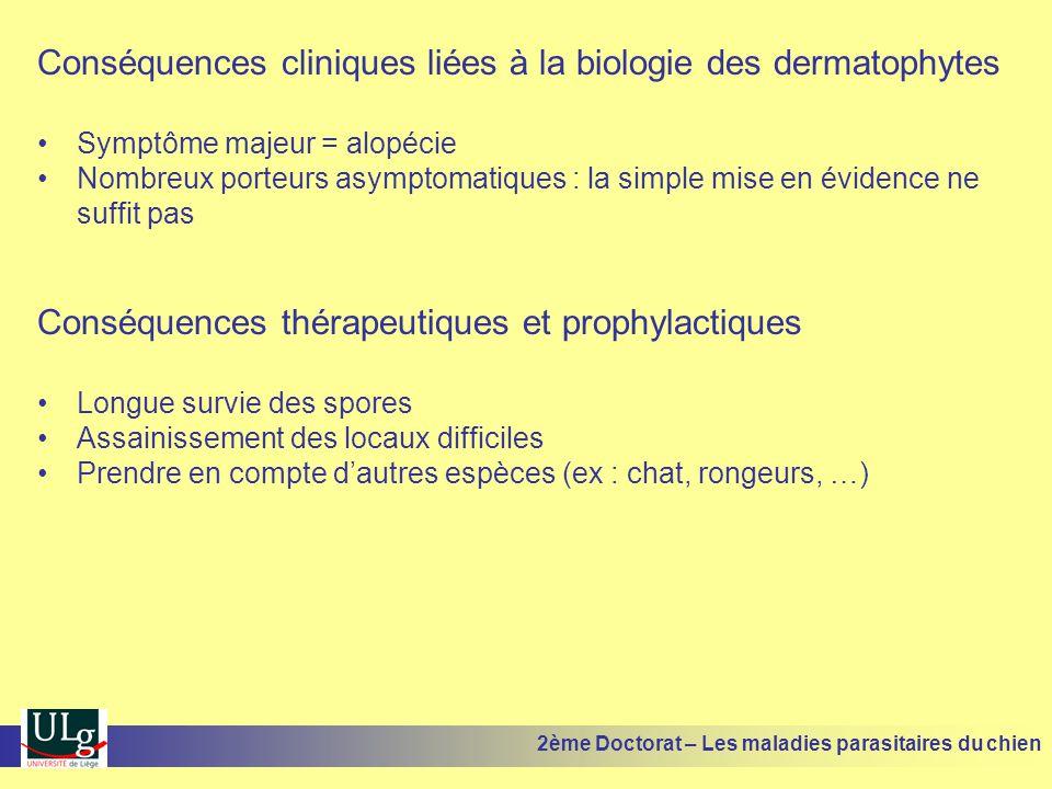 Conséquences cliniques liées à la biologie des dermatophytes Symptôme majeur = alopécie Nombreux porteurs asymptomatiques : la simple mise en évidence