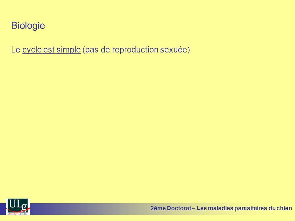 Aspect clinique Assez variable en fonction de la réactivité individuelle lespèce fongique en cause 1.Teigne sèche tondante ou microsporique (forme classique) 2.Teigne épidermophytie à M.