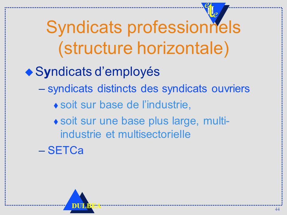 44 DULBEA Syndicats professionnels (structure horizontale) u Syndicats demployés –syndicats distincts des syndicats ouvriers t soit sur base de lindus
