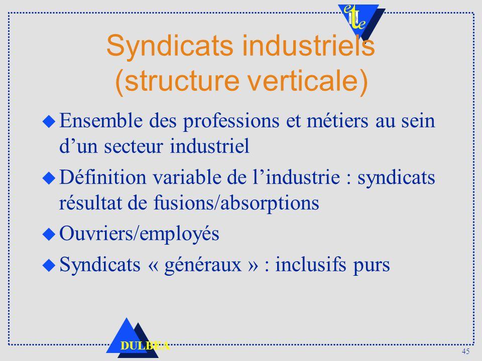 45 DULBEA Syndicats industriels (structure verticale) u Ensemble des professions et métiers au sein dun secteur industriel u Définition variable de li