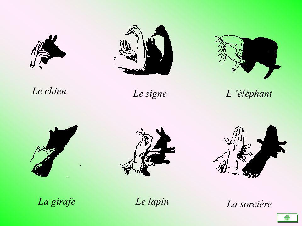 Le chien Le signeL éléphant La girafeLe lapin La sorcière
