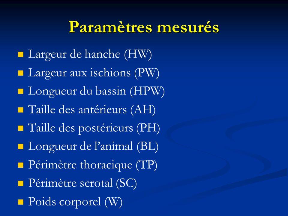 Paramètres mesurés Largeur de hanche (HW) Largeur aux ischions (PW) Longueur du bassin (HPW) Taille des antérieurs (AH) Taille des postérieurs (PH) Longueur de lanimal (BL) Périmètre thoracique (TP) Périmètre scrotal (SC) Poids corporel (W)