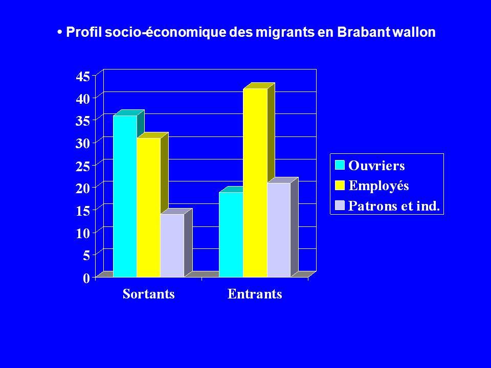 Profil socio-économique des migrants en Brabant wallon