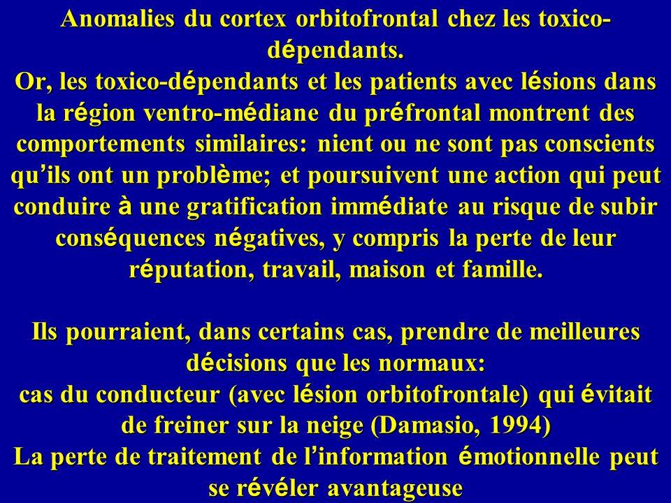 Anomalies du cortex orbitofrontal chez les toxico- d é pendants.