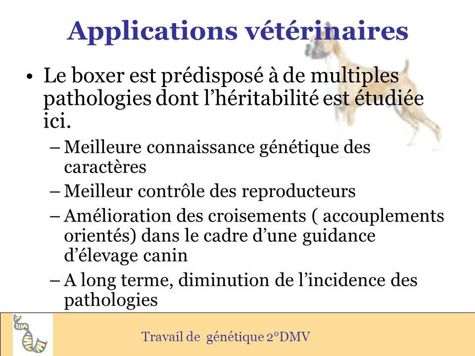 Applications vétérinaires Le boxer est prédisposé à de multiples pathologies dont lhéritabilité est étudiée ici. –Meilleure connaissance génétique des