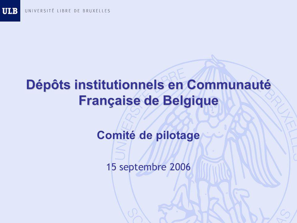 Dépôts institutionnels en Communauté Française de Belgique Comité de pilotage 15 septembre 2006