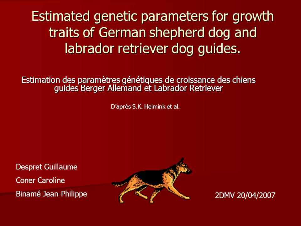 Estimated genetic parameters for growth traits of German shepherd dog and labrador retriever dog guides.
