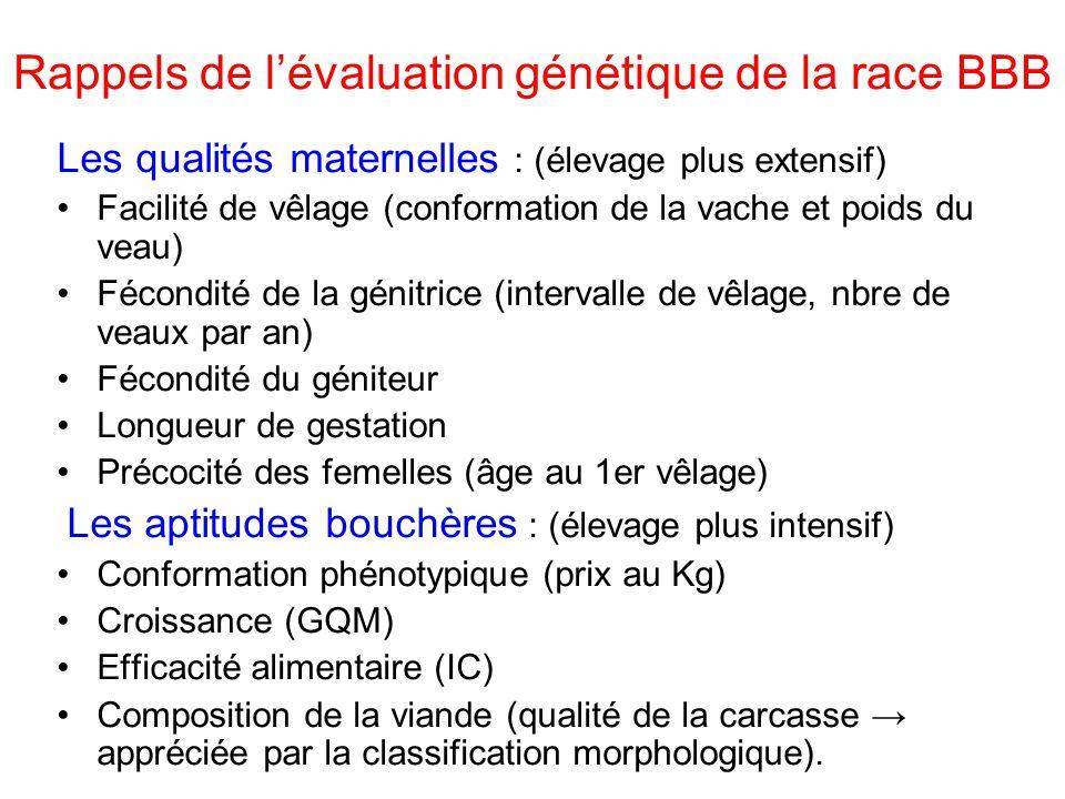 Rappels de lévaluation génétique de la race BBB Les qualités maternelles : (élevage plus extensif) Facilité de vêlage (conformation de la vache et poids du veau) Fécondité de la génitrice (intervalle de vêlage, nbre de veaux par an) Fécondité du géniteur Longueur de gestation Précocité des femelles (âge au 1er vêlage) Les aptitudes bouchères : (élevage plus intensif) Conformation phénotypique (prix au Kg) Croissance (GQM) Efficacité alimentaire (IC) Composition de la viande (qualité de la carcasse appréciée par la classification morphologique).